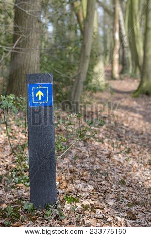 Walking Route Called Komiezenpad Nearby The Village Winterswijk On The Border Of The Netherlands And