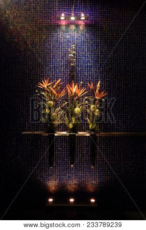 Birds Of Paradise Flowers Are Beautiful And Unique Blooms. They Last For Ages In A Vase Inside. The