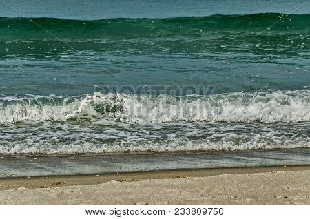 Waves Rolling Onto A Beach In Florida