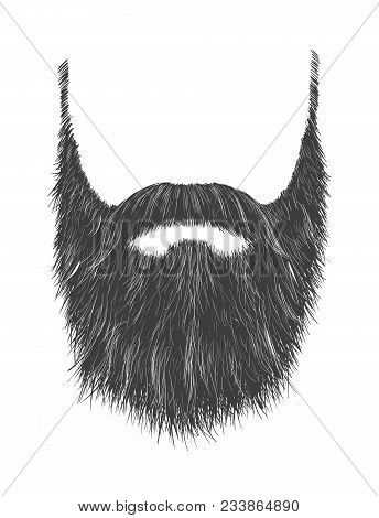 Long Man Beard With No Face. Hand Drawn Vector Fashionable Hipster Beard With Mustache.