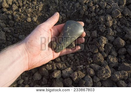 Neolithic Stone Axe 5000-6000 Bc