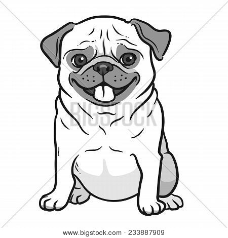 Pug Dog Black And White Hand Drawn Cartoon Portrait. Funny Happy Smiling Pug, Sitting And Looking Fo