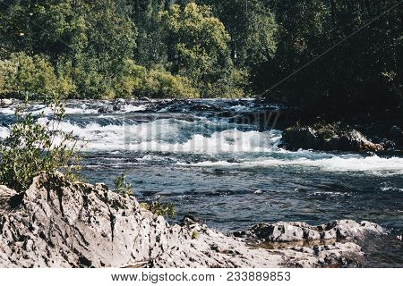 Fast Mountain River In Rapid Flow In The Green Forest