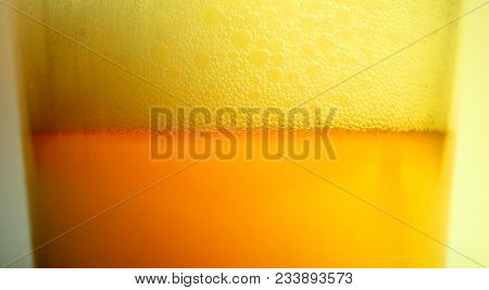 Freshly Flavored Beer World Consumption Of Alcohol Solving Problem Habit Impact Influence Disease Ad