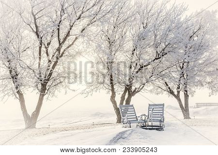 Horizontal Image Of Two Outdoor Wooden Chairs  Covered In Hoarfrost Sitting By A Fire Pit Surrounded