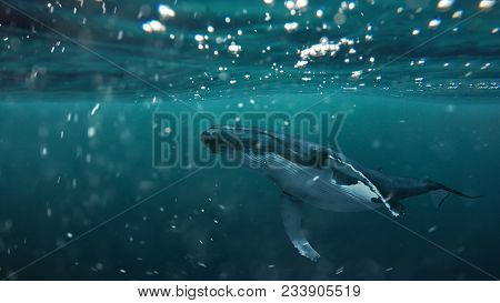 A Whale Under The Water. The Majestic Sea Animal Floats In The Water Column.