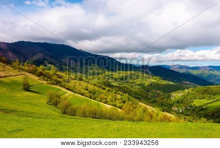 Grassy Fields In Mountainous Rural Area. Lovely Springtime Scenery On A Cloudy Day