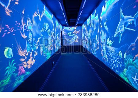 Sochi, Adler, Russia - September 15.2011: Interior Of The City Halls Of The Sochi Discovery World Aq