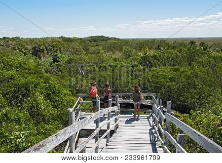 Holbox, Mexico-march 24, 2018: Tourists On The Observation Deck Over The Cenote Yalahau, Holbox, Qui
