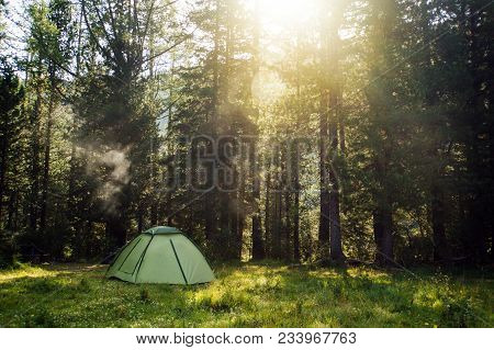 View Of Tent In Forest At Sunset Or Sunrise. Camping Background.tourist Tent In Green Pine Forest Wi
