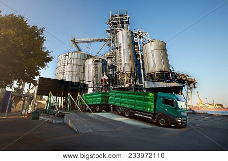 Unloading Grain Truck At Elevator On Elevating Hydraulic Platform Unloader. Grain Crops Transshipmen