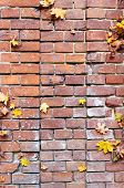 yellow autumn leaves on old brick outdoors poster