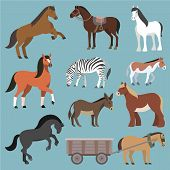 Horse vector animal of horse-breeding or equestrian and horsey or equine stallion illustration animalistic horsy set of pony zebra and donkey character isolated on background. poster