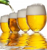 Pouring beer into four glasses with white background and reflection poster