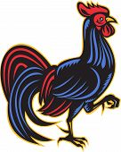 illustration of a rooster cockerel marching viewed from side done in retro woodcut style on isolated white background. poster