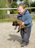 little boy and his puppy purebred belgian shepherd poster
