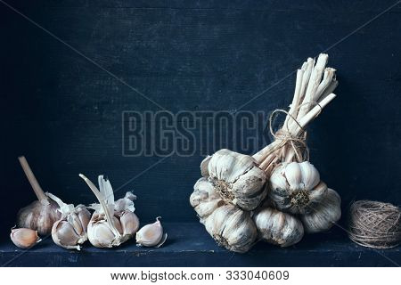 Fresh organic garlic bulb, tied together with opened garlic bulb and unpeeled cloves.
