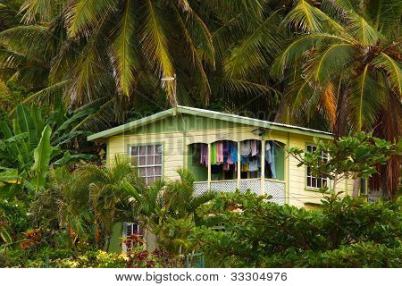 House In Tropical Forest