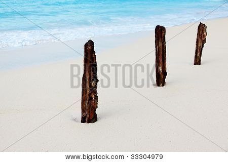 Three Sticks On The Beach