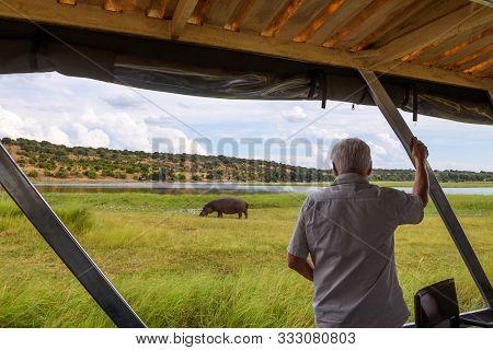 Chobe National Park, Botswana - April 7, 2019 : Tourist Observes A Hippo In Its Natural Habitat Alon