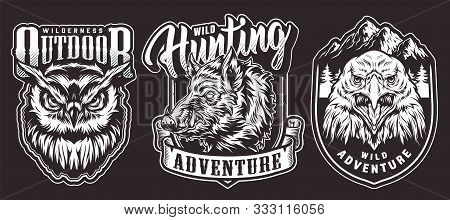 Vintage Outdoor Adventure Emblems With Aggressive Dangerous Owl Wild Boar And Eagle Heads On Dark Ba
