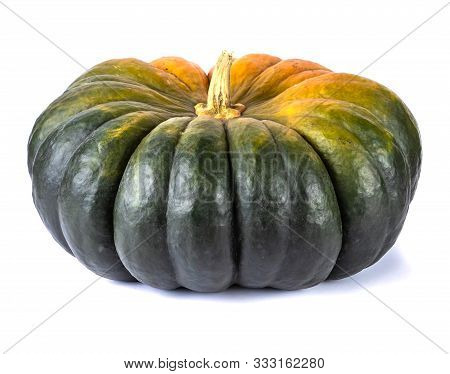 Enormous Overripe Green Pumpkin Isolated On White Background. Autumn Harvest Creative Concept