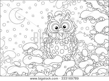 Thoughtful Owl Perched On A Snow-covered Branch Of A Prickly Fir In A Winter Forest On A Cold And Sn