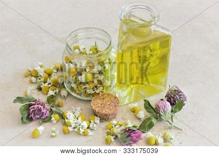 Essential Oil In Glass Bottle With Fresh Chamomile Flowers, Beauty Treatment. Spa Concept. Selective