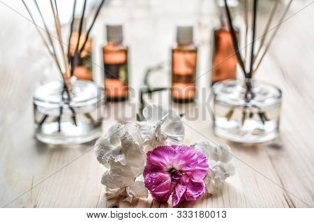 Incense Stick Burning In Incense Burner And Candle With Lotus Flower Shape. Rose
