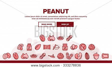 Peanut Food Landing Web Page Header Banner Template Vector. Peanut Oil And Butter, Acorn And Hazel,