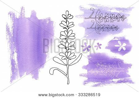 Set Of Elements From Lilac Purple Spots And Lavender Flowers Isolated On A White Background. Handmad
