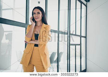 Portrait Of Her She Nice Attractive Charming Cute Smart Trendy Lady Calling Partner Discussing New R