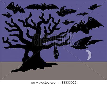 Bats and tree