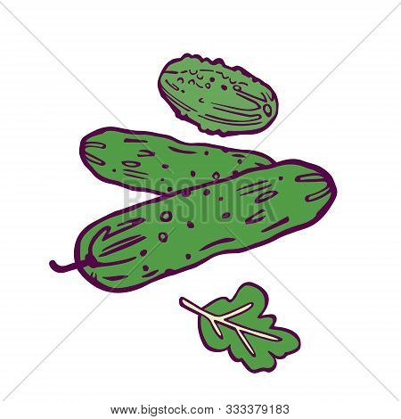 Three Cucumbers Illustration. Hand-drawn In Cartoon Style. Colored Artwork Isolated On White Backgro