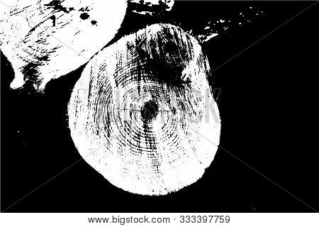 Wood Texture, Created From A Photo Of A Cross Section Of The Tree. Vector Abstract Background.