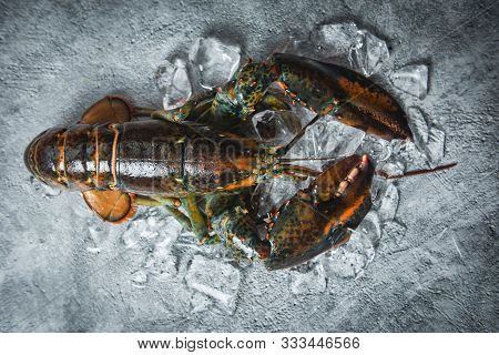 Fresh Lobster Shellfish In The Seafood Restaurant For Cooked Food / Raw Lobster On Ice On A Black St