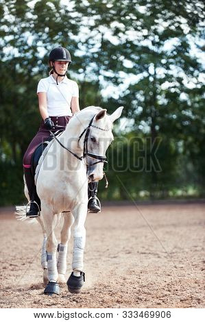 Young Pretty Teenage Girl Equestrian Practicing Horseback Riding On Manege. Outdoors Summertime Mult