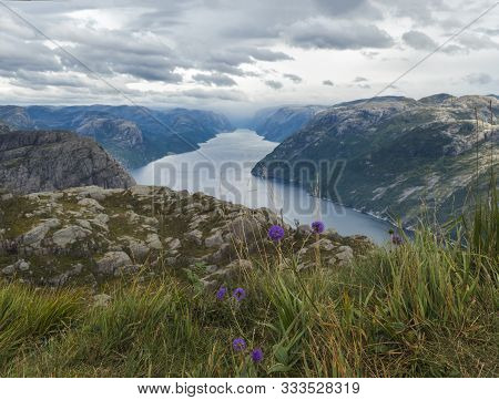 View On Fjord Lysefjord, Next To Preikestolen Massive Cliff Famous Norway Viewpoint With Blooming Vi