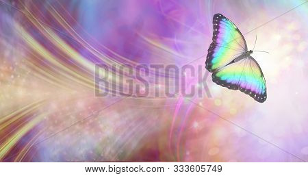 Transformation And Spiritual Release Concept - Vibrant Butterfly Against A White Energy Formation Fl