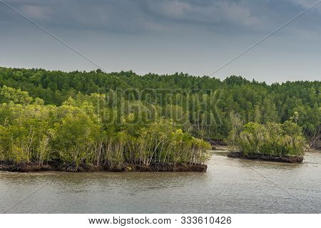 Long Tau River, Vietnam - March 12, 2019: At Thieng Lieng Up From Mouth Of River: Islets Covered By