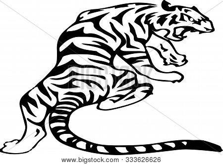 Tiger Icon On White Background Wildcat, Wildlife, Zoo