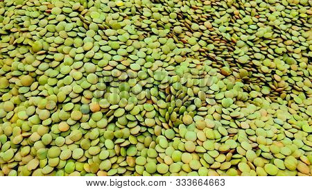 Pile Green Lentil Background Legume Pattern Of Organic Farm. Close-up Lot Of Green Lentils Legume So