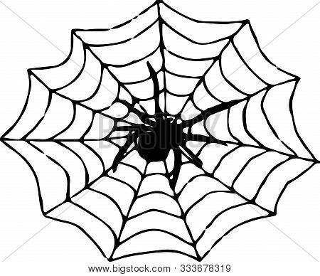 Spider Icon On White Background  Symbol, Tarantula, Tattoo