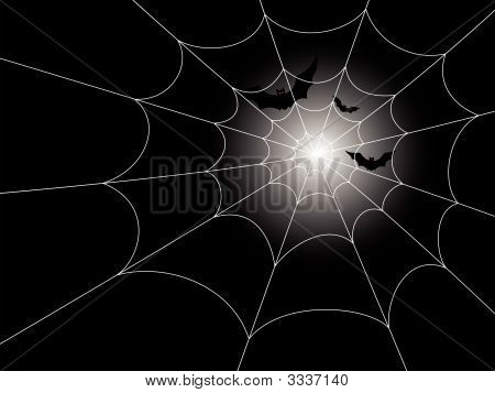 Bats And Spiderweb In The Moonlight