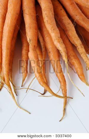 Carrots From The Garden Do You Good