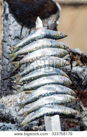 Espeto, Malaga Style Fish On Stick Barbecue Prepared On Olive Tree Firewoods