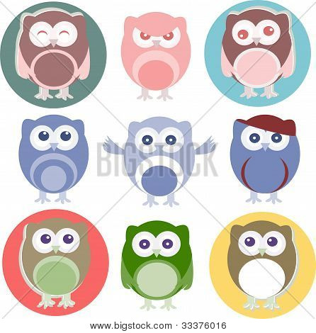 Set of vector cartoon owls with various emotions poster