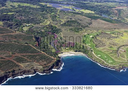 Aerial View Of The Kauai South Coast Showing Coffee Plantations Near Poipu Kauai Hawaii Usa