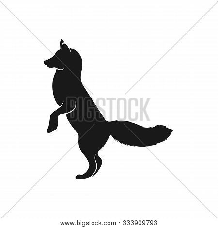 Fox Logo Vector. Animal Coyote Logo Design Template Illustration