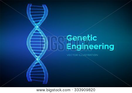 Dna Sequence In Hands. Wireframe Dna Molecules Structure Mesh. Dna Code Editable Template. Science A